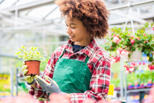 Young woman smiling during work at a modern flower market Stock photo © Kzenon