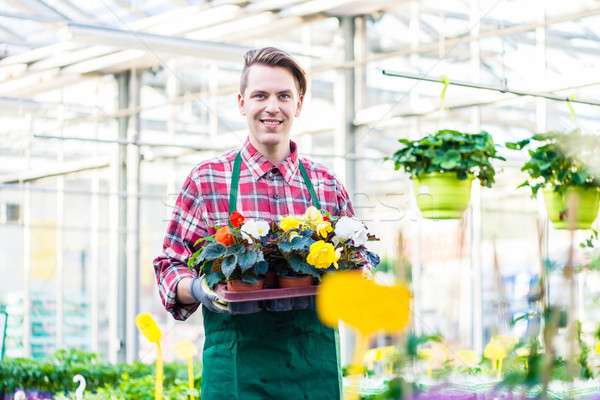 Jeune homme plateau fleurs travail fleuriste Photo stock © Kzenon