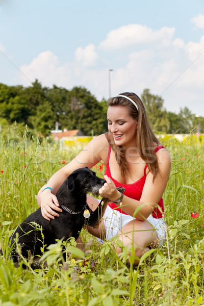Woman playing with her dog in a meadow Stock photo © Kzenon