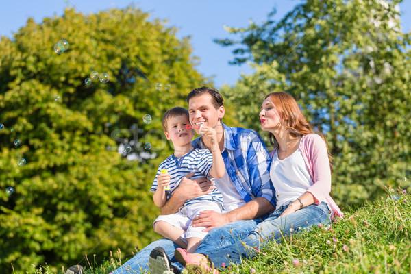 Familie vergadering weide spelen zeepbellen man Stockfoto © Kzenon