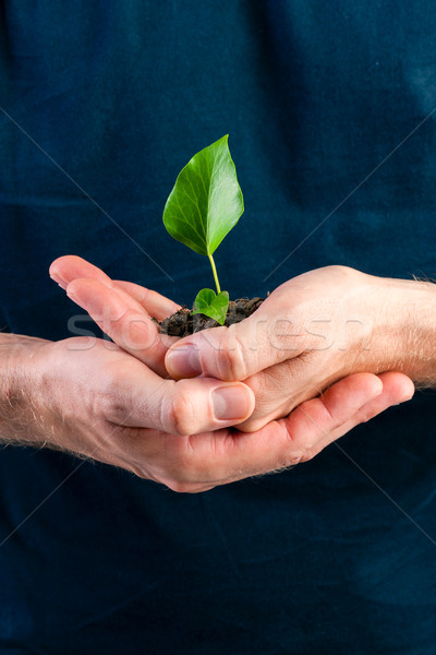 Man holding seedling in his hands Stock photo © Kzenon