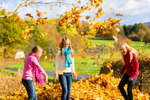 Friends romping in harvest leaves throwing foliage  Stock photo © Kzenon