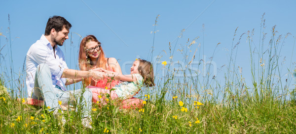 Stock photo: Family holding hands in summer in the grass