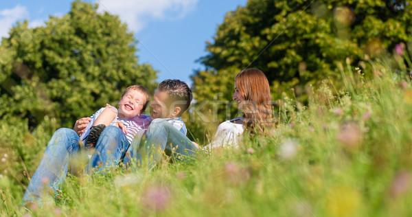 Family cuddling sitting on meadow in summer Stock photo © Kzenon