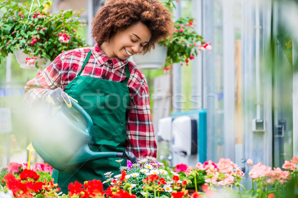 Beautiful young woman watering various potted houseplants in a m Stock photo © Kzenon