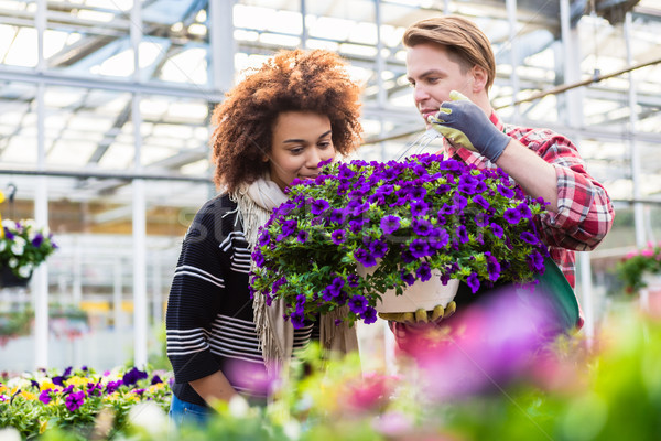 Beautiful woman thinking of buying a fragrant potted purple petunias Stock photo © Kzenon