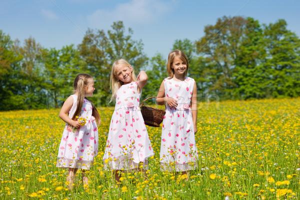 çocuklar easter egg hunt çayır bahar bakıyor Stok fotoğraf © Kzenon