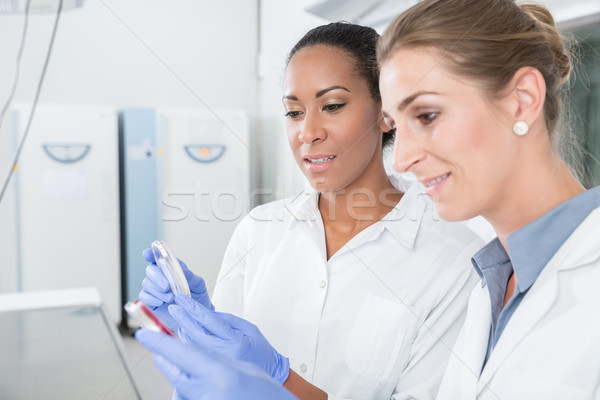 Scientists in research lab with analyzing instrument talking about results Stock photo © Kzenon