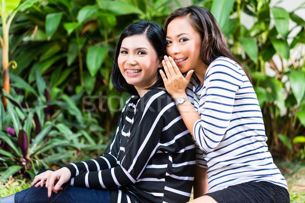 Zwei asian Freundinnen tropischen Umwelt Stock foto © Kzenon