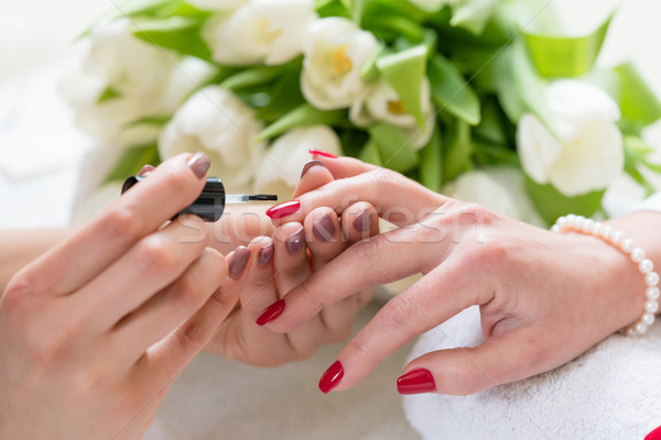 Hands of a skilled manicurist applying red nail polish on nails Stock photo © Kzenon