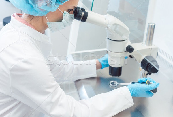 Doctor or scientist working on biotech experiment in laboratory Stock photo © Kzenon