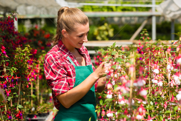 Female gardener in market garden or nursery Stock photo © Kzenon
