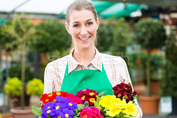 Stockfoto: Tuinman · markt · tuin · kwekerij · vrouwelijke · bloemist
