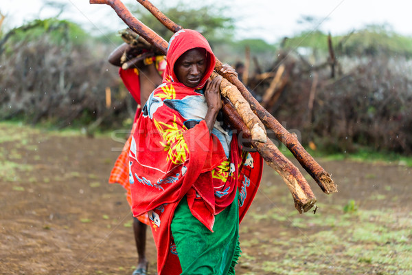 Massai man collecting firewood Stock photo © Kzenon
