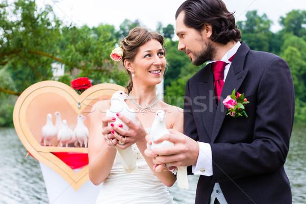 Coppia wedding bianco felice Foto d'archivio © Kzenon
