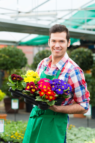 садовник рынке саду питомник флорист Сток-фото © Kzenon