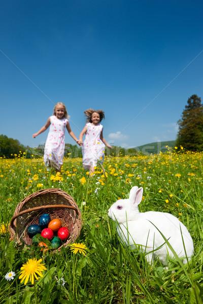 Stockfoto: Kinderen · bunny · weide · voorjaar · voorgrond