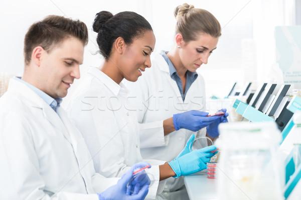 Grupo científico tecnologia corpo Foto stock © Kzenon