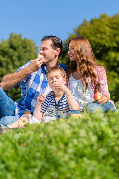 Family having picnic sitting in grass on meadow Stock photo © Kzenon