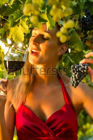 Woman with glass of wine in vineyard Stock photo © Kzenon