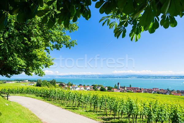 View on Bodensee with alp mountain range in background Stock photo © Kzenon