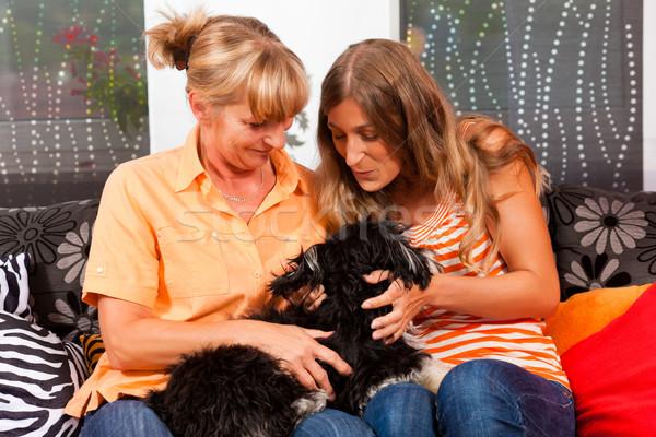 две женщины собака матери дочь играет домой Сток-фото © Kzenon