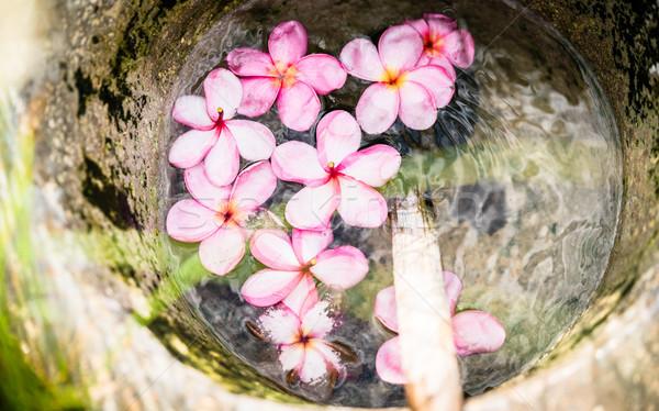 Fleurs fleur eau bois bol Photo stock © Kzenon