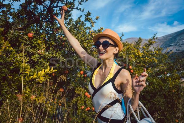 Donna rubare melograno frutta albero guardando Foto d'archivio © Kzenon
