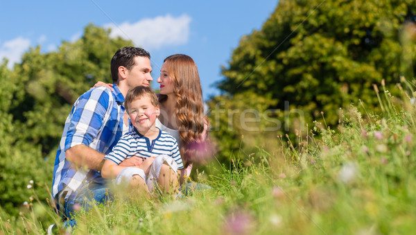 Family cuddling sitting on meadow in summer Stock photo © Kzenon