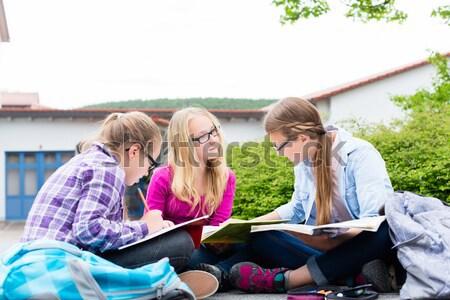 Studenten huiswerk school samen lezing boeken Stockfoto © Kzenon