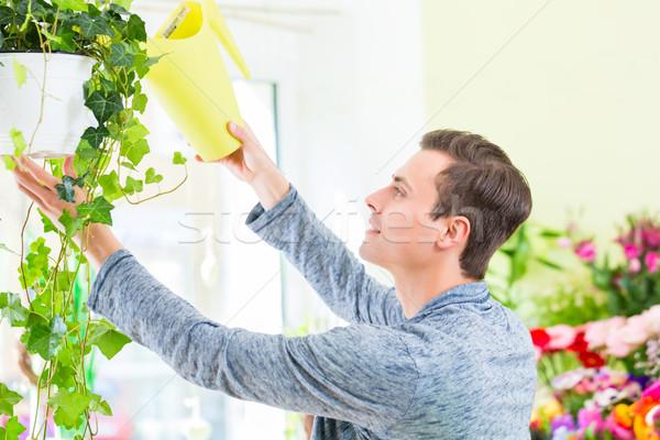 Fleuriste travail plantes fleur Photo stock © Kzenon