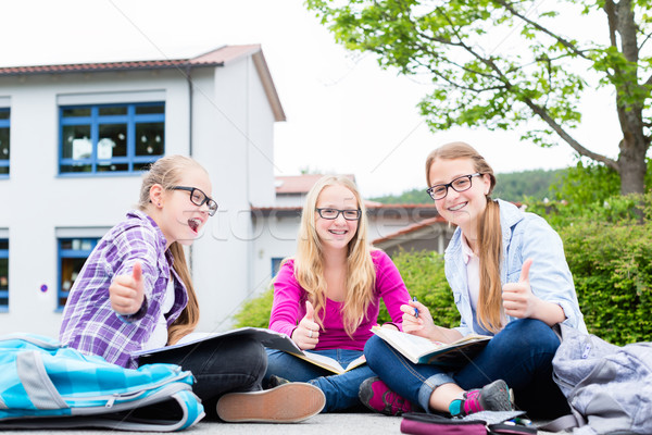 Stock photo: Students doing homework for school together