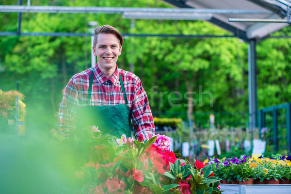 Handsome young man smiling happy while working as florist in a m Stock photo © Kzenon