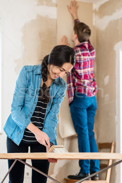 Attractive woman renovating together with her partner Stock photo © Kzenon