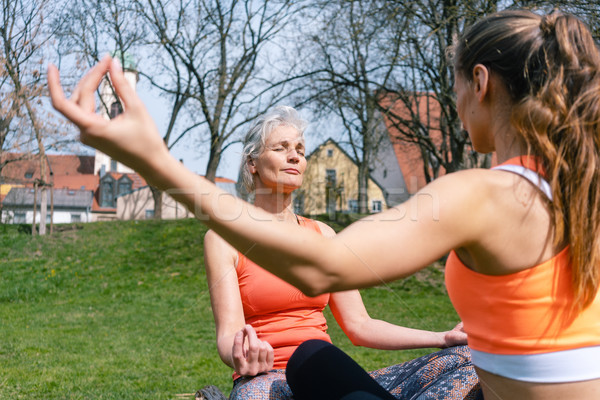 Mother and adult daughter in yoga mediation outdoors Stock photo © Kzenon