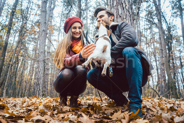 Couple of woman and man playing with their dog in fall Stock photo © Kzenon