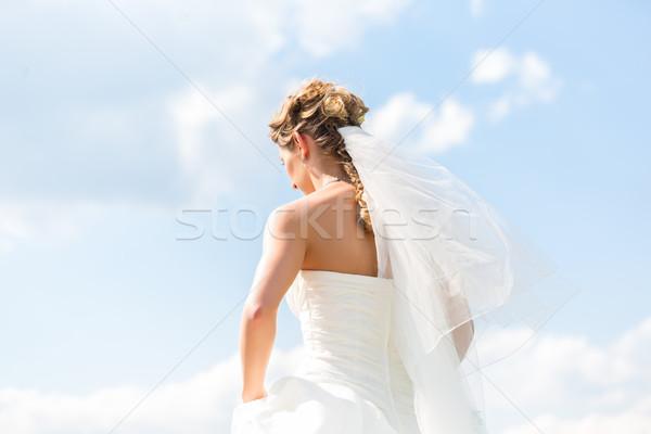 Bride in gown with bridal veil Stock photo © Kzenon