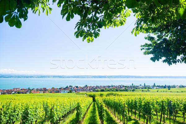 View on Bodensee with alp mountain range in background Stock photo © Kzenon