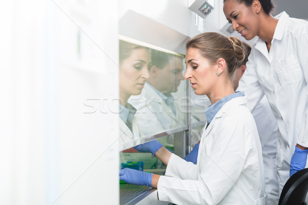 Researcher and lab assistant working together on scientific samp Stock photo © Kzenon