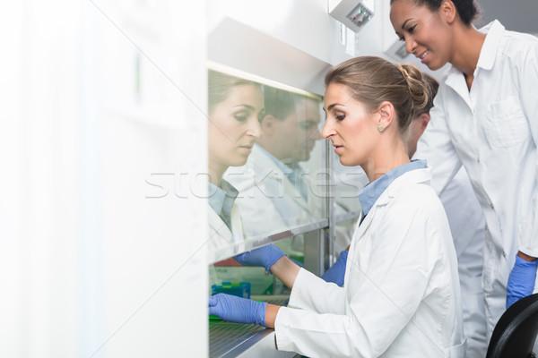 Investigador lab assistente científico Foto stock © Kzenon