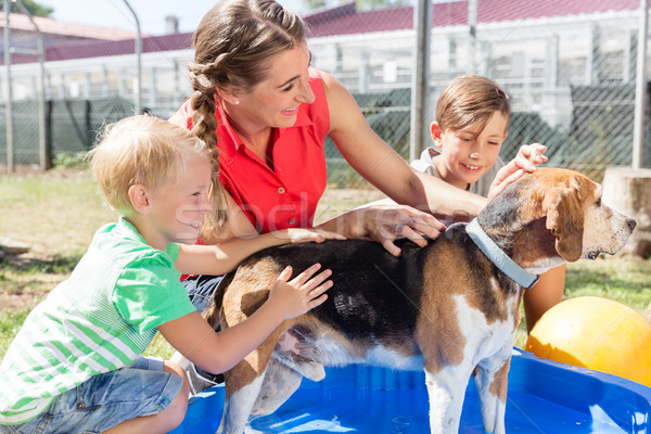 Family washing dog in pool of animal shelter Stock photo © Kzenon