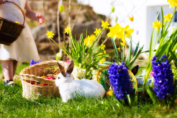 Easter Bunnies on meadow with basket and eggs Stock photo © Kzenon