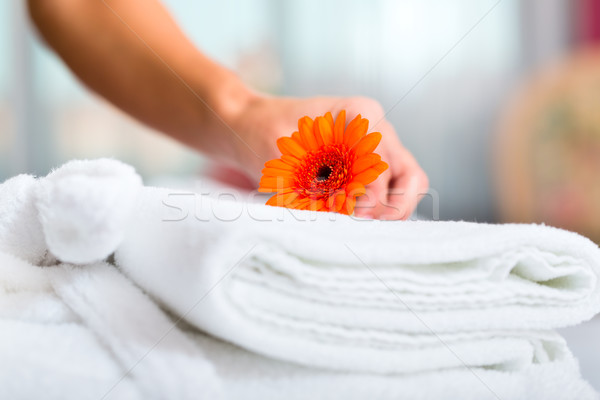 Empregada serviço de quarto hotel para cima mulher Foto stock © Kzenon