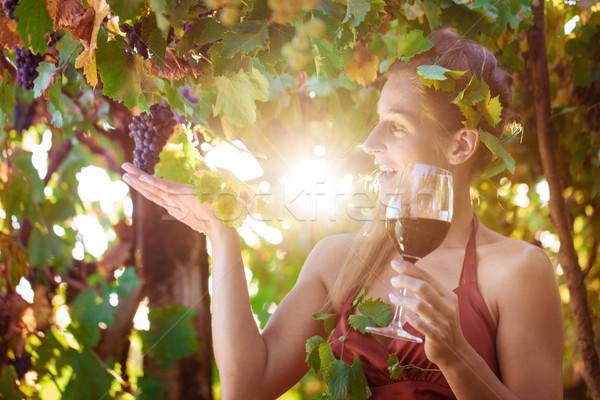 Bor királynő szőlőskert nap ragyogó nő Stock fotó © Kzenon