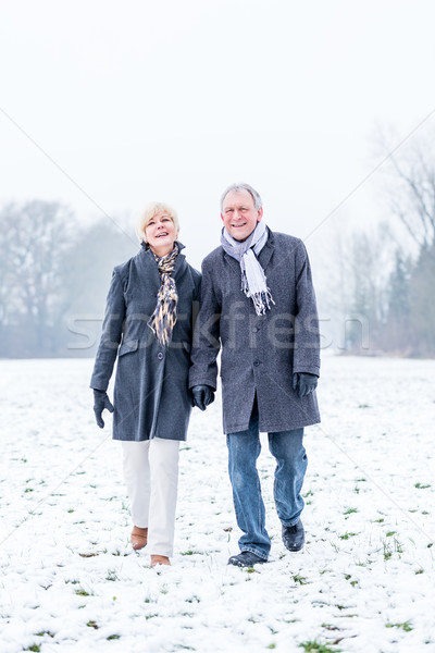 Senior couple having walk in winter Stock photo © Kzenon