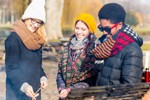 Group of young people roasting sausages outdoors Stock photo © Kzenon