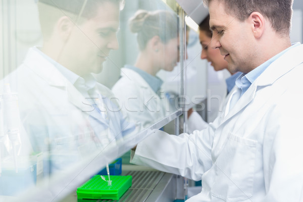 Researchers in science lab preparing samples  Stock photo © Kzenon