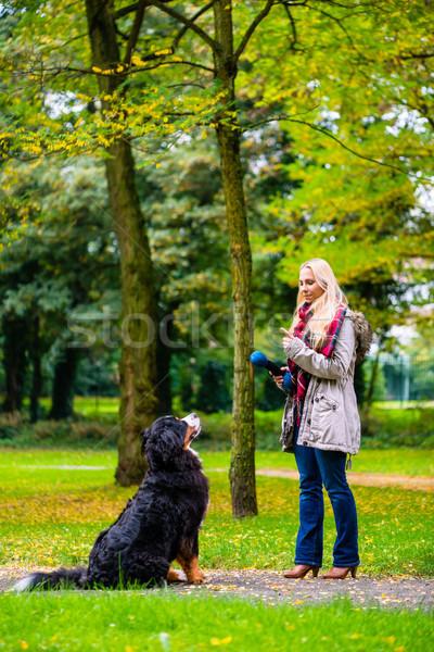 Kız sonbahar park eğitim köpek itaat Stok fotoğraf © Kzenon