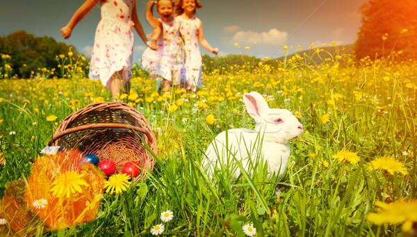 Bambini uovo caccia Pasqua coniglio prato Foto d'archivio © Kzenon