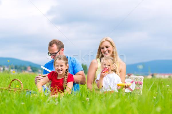Happy family having picnic in meadow Stock photo © Kzenon